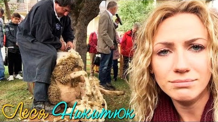 Леся и Орел и Решка в Мюнхене на фестивале стрижки овец. Канал Леси Никитюк