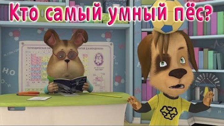 Барбоскины - Кто самый умный Пёс? (трейлер)