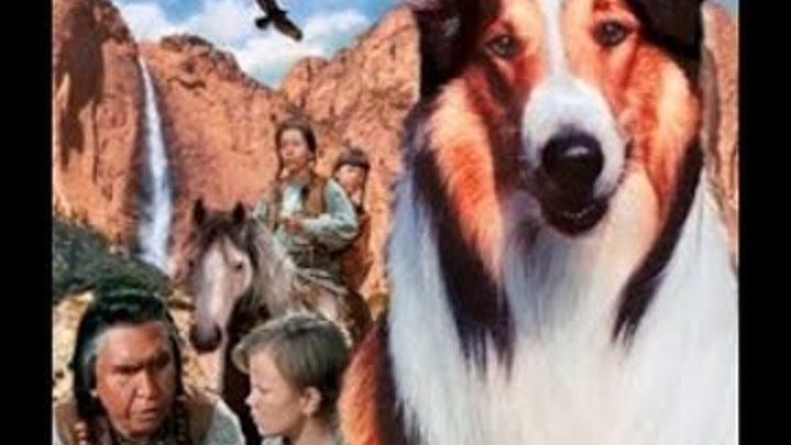 Лесси в разрисованных холмах / Lassie The Painted Hills - семейный приключенческий фильм