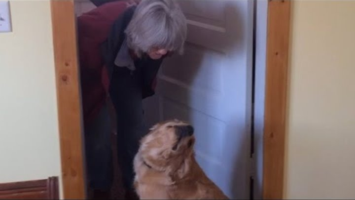 Dog Refuses to Kiss Her Owner