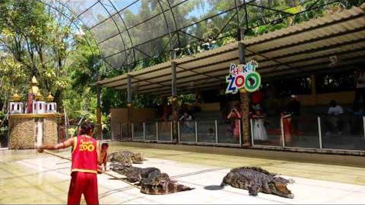 Таец засунул свою голову в пасть крокодила