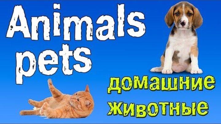 Английский для детей. Животные на английском языке.(домашние питомцы).