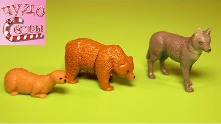 Киндер Сюрприз Энимал Плэнет распаковка игрушек. Kinder Surprise eggs Animal Planet unboxing.