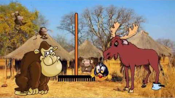Иркутский зоопарк 2 сезон 1 серия. В поисках красных граблей