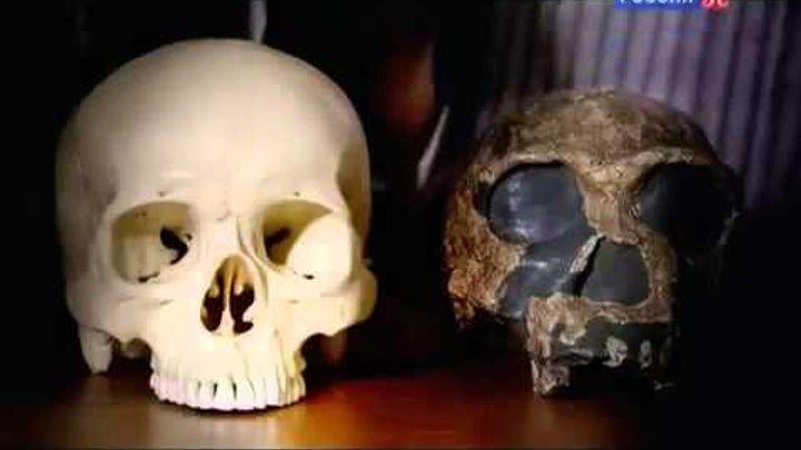 BBC: Рождение человечества: Битва за планету Земля: Homo Erectus / 1 серия