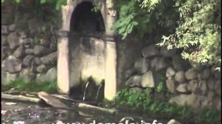 Damala clip 1 2009