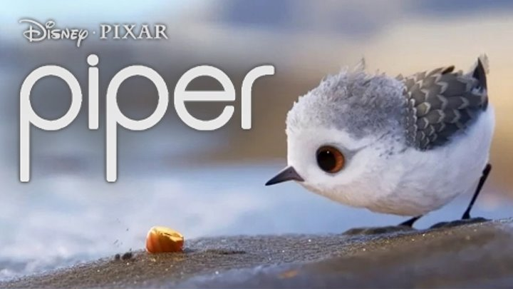 Piper Short Film Pixar Short Storytelling