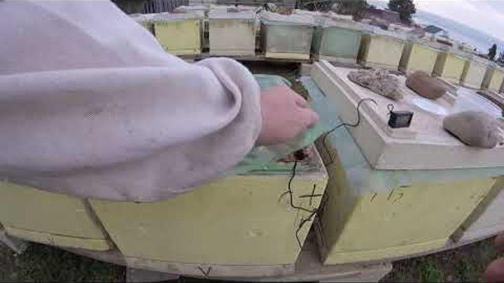 Хороший метод обогрева пчёл сбоку через глухой карман с 30-й минуты. Часть 2 . 26.02.2019 г.