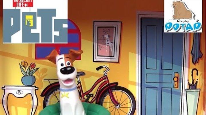 Тайная Жизнь Домашних Животных Мультик – ДОМИК С КОМНАТАМИ! Mini Pets Apartments Видео для Детей!