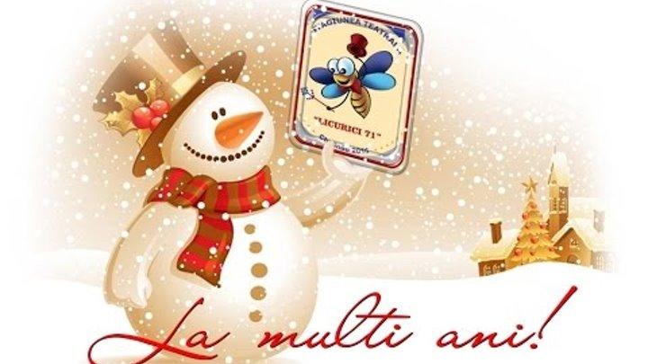 """Anul Nou la """"LICURICI"""""""