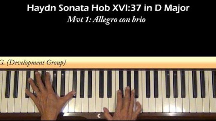 Haydn Sonata Hob XVI:37 1st mvt Piano Tutorial