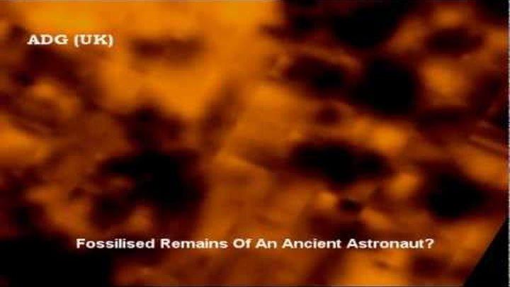 Alien Bio Humanoid Found On Mars? 2012 HD