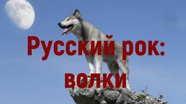 Русские рок-песни про волков. Тематическая подборка