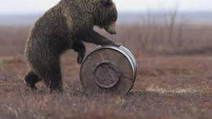 Маша и Медведь - С любимыми не расставайтесь (Трейлер) Новая серия! Скоро!