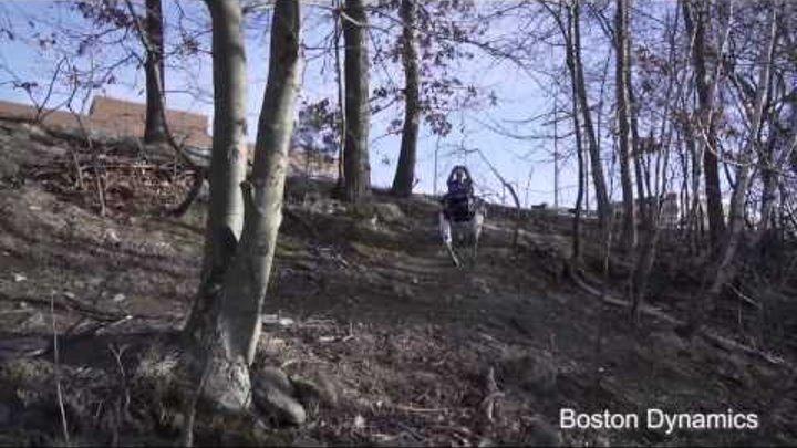 Boston Dynamics продемонстрировала нового робота по кличке Spot