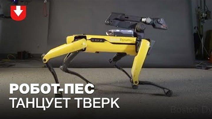 Робот-пес Boston Dynamics научился танцевать
