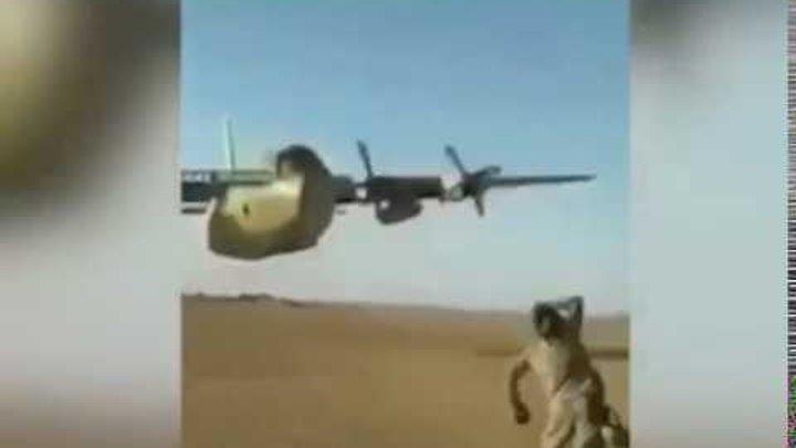 Безумие на бреющем полете: опубликовано видео пролета С-130 в метре от голов военных