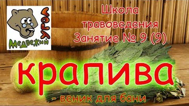 Школа травоведения. Занятие № 9 (9) КРАПИВА - веник для бани