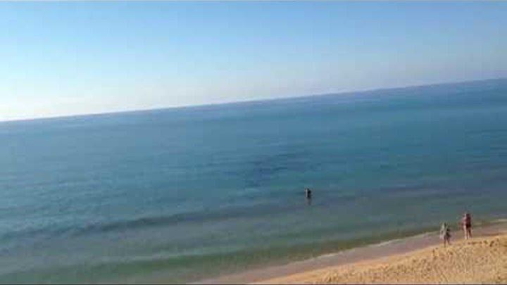 Феодосия, песчаная балка, эллинг. Купание с дельфином в море.