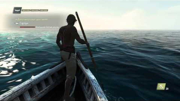 Охота на большую белую акулу