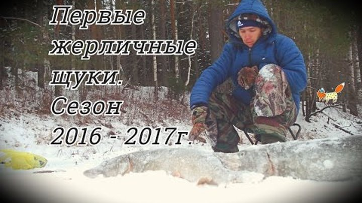 Первые жерличные щуки. Сезон 2016 - 2017 года. Болен Рыбалкой №319