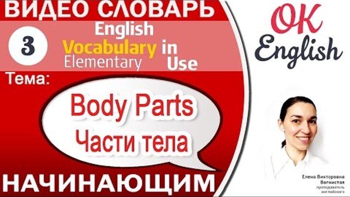 Тема 3 Parts of the Body - Части тела на английском. Английский видео словарь для начинающих