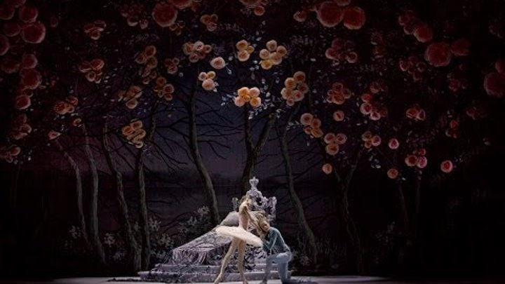 Спящая Красавица в Михайловском театре / The Sleeping Beauty at the Mikhailovsky Theatre