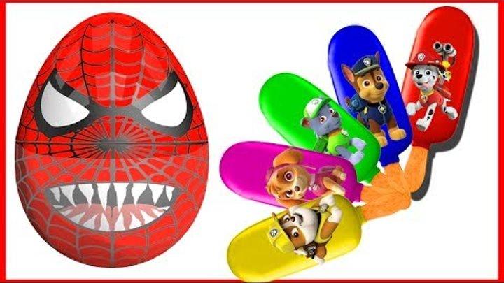 Surprise Eggs Spiderman Paw Patrol Ice Cream | Paw Patrol Cartoon Finger Family Colors Learn