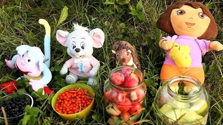 Ищем КЛАД! Учим Фрукты Овощи Ягоды развивающий мультик с игрушками для детей Даша Путешественница