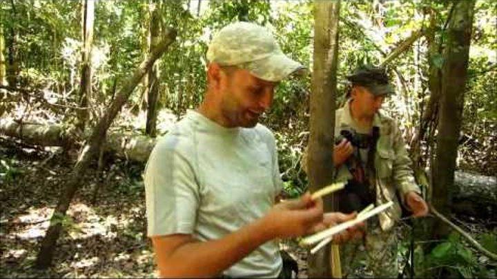 Экспедиция в верховья Амазонки. Школа выживания Волчица
