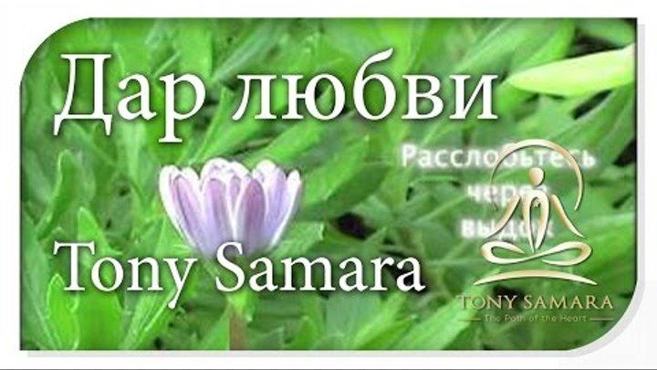 РУССКИЙ ЯЗЫК - Дар любви - TonySamara.com - RU