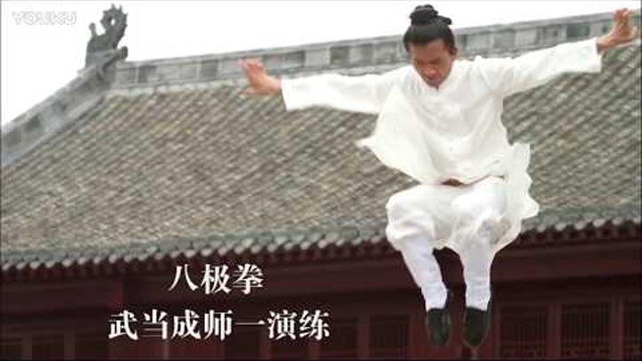 Wudang Ba Ji Quan master Cheng Shi Yi