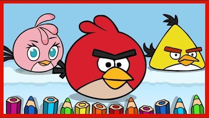 Рисуем Энгри Бердз. Draw Angry Birds. Злые птицы: Ред, Стелла,Чак. Red, Stella, Chuck.