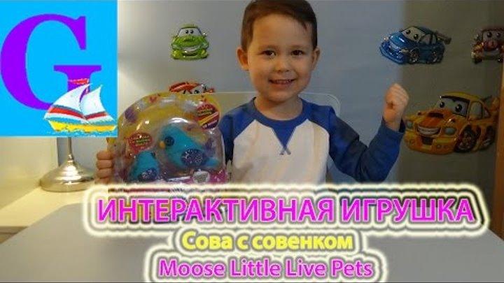 Интерактивная игрушка - Сова с совенком Moose Little Live Pets