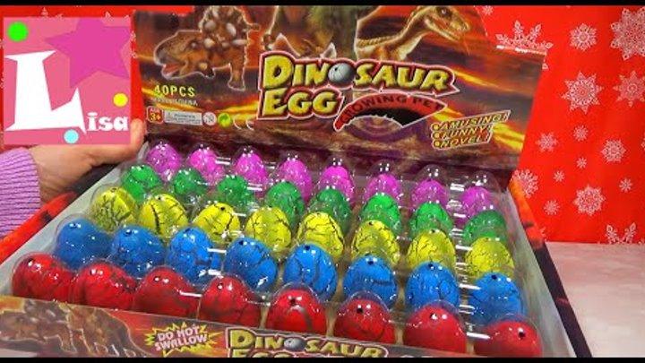 Растущие животные динозавры Яйца динозавров игрушки Growing dino in egg Growing dinosaur in water