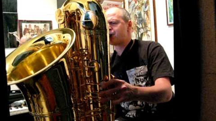 Sandro Cerino plays J'Elle Stainer Compact Contrabass