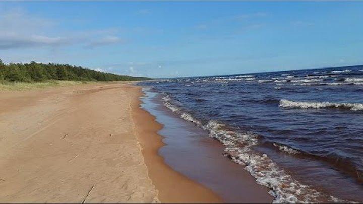 В Карелию к берегам Ладоги - Видлица(Олонец) (Видео туризм)
