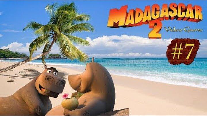 Мадагаскар 2 Часть 7 Ухаживание за Глорией