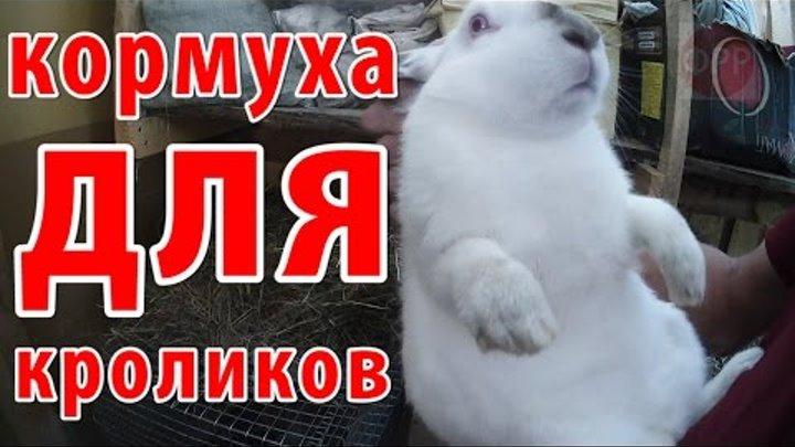 про село - как сделать кормушку для кроликов своими руками // Жизнь в деревне // деревенская жизнь