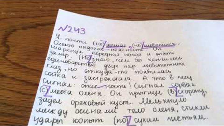 Задание №243. Русский язык 5 класс Ладыженская.