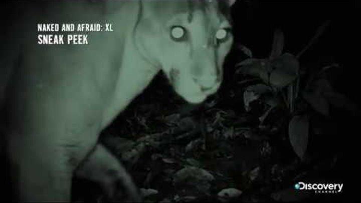 Сердце тьмы - Голые и напуганные XL: сезон 2