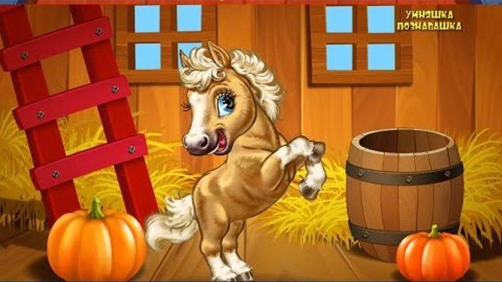 Развивающий мультфильм для детей. Домашние животные для малышей. #Мультик названия и голоса животных