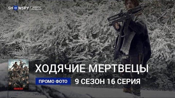 Ходячие Мертвецы 9 сезон 16 серия промо фото