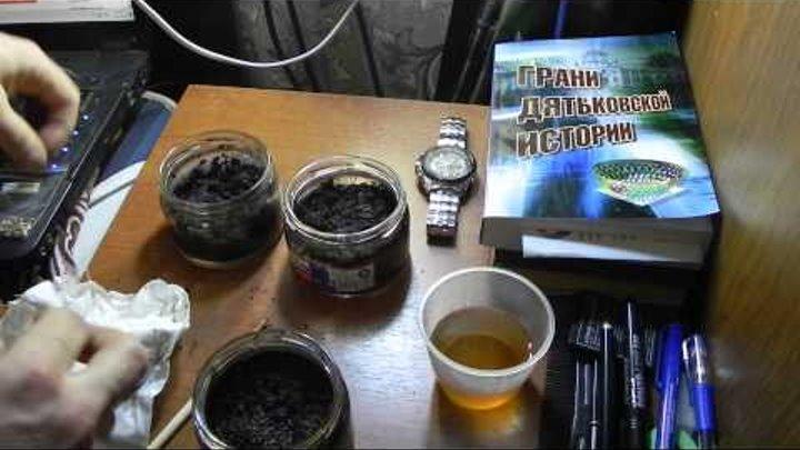 эксперимент выращивания японской сосны бонсай bonsay дома способ первый часть 1