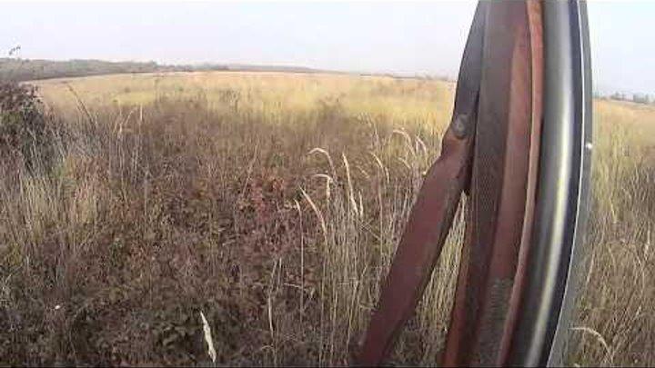 охота на фазана 2014ю