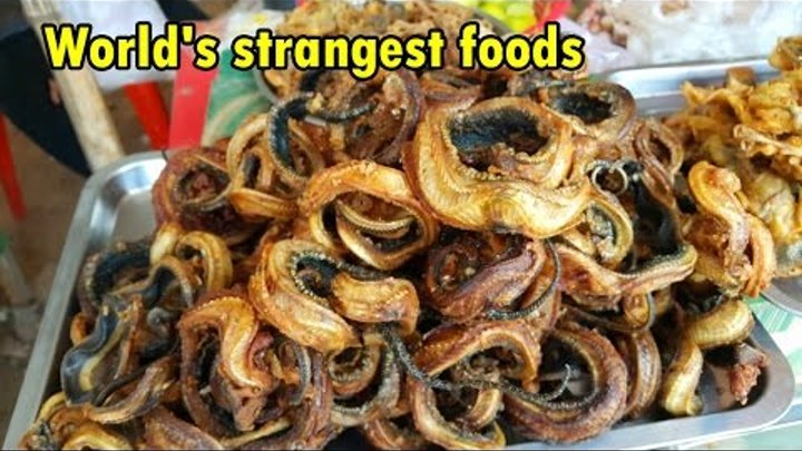 Asian Street Food Khmer Food - Fried Snake. Asia world's strangest foods weird frogs, birds insects.