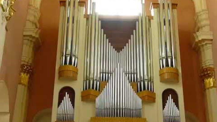 P1450146 Фрагмент концерта органной музыки.