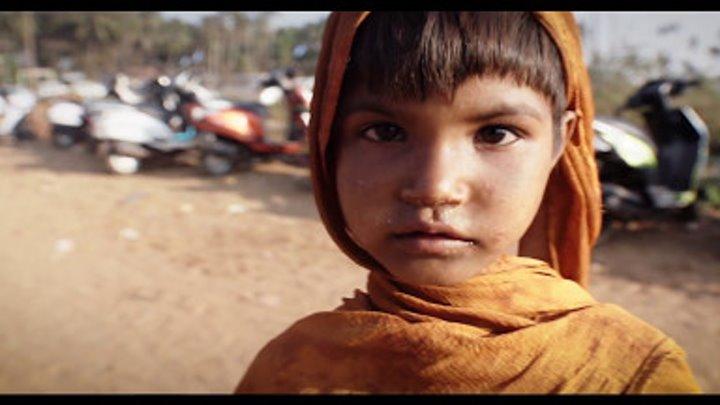 Групповое путешествие в Индию 2017 | Дели. Сердце Индии. Гоа. [TripBeat]