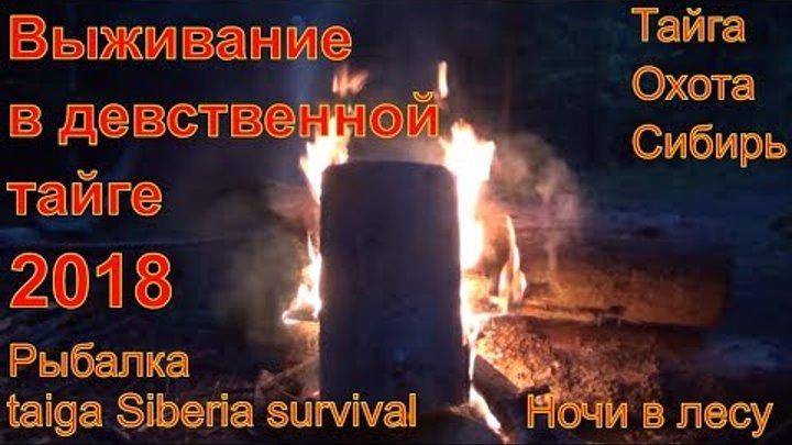 В Тайге 10 суток 2018 Рыбалка на хариуса и щуку Выживание в тайге Охота Поход в лес Сибирь Тайга