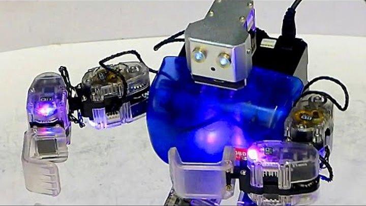 Робототехника. Современные Роботы. Robobuilder. Бал Роботов. Танец Роботов